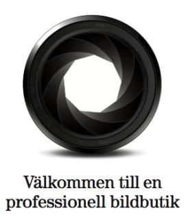 BJUDA PÅ BILAR PÅ NÄTET GRATIS SBA